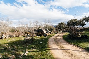 Landscape with green grass, rocks and road