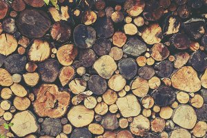 background of round spilled wood