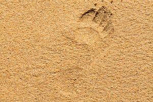 Footprint on the wet sand of a beach