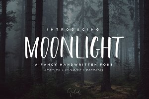 NEW| 40% OFF | Moonlight Brush Font