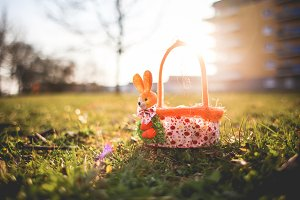 Basket with Easter Eggs in Sun