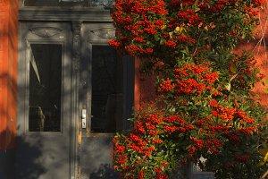 Orange Vintage Entrance