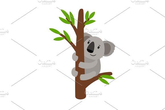 Grey Koala On Tree