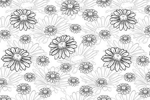 Vector chamomile seamless pattern