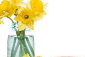 Daffodils in a blue mason jar