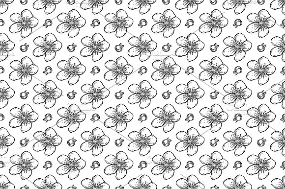 Vector Sakura Seamless Pattern
