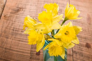Daffodil flowers in blue vase