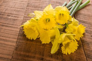 Bundle of yellow daffodil flowers
