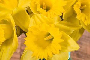 Daffodil flowers in a bouquet