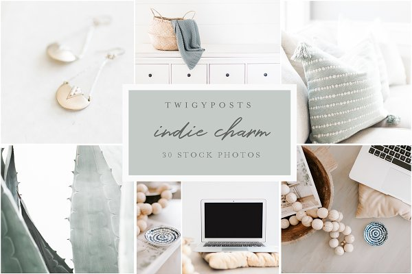 Mobile &amp&#x3B; Web Mockups: TwigyPosts - Indie Charm - 30 Styled Stock Photos