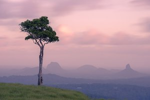 View of one tree hill in Maleny