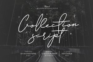 10 Font Script Collection Bloom
