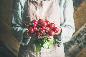 Female farmer in apron holding bunch of radish in hands
