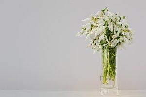 Snowdrop flowers at vase
