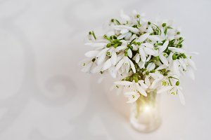 Snowdrop flowers at vase