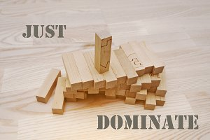 Wooden block with slogan dominate
