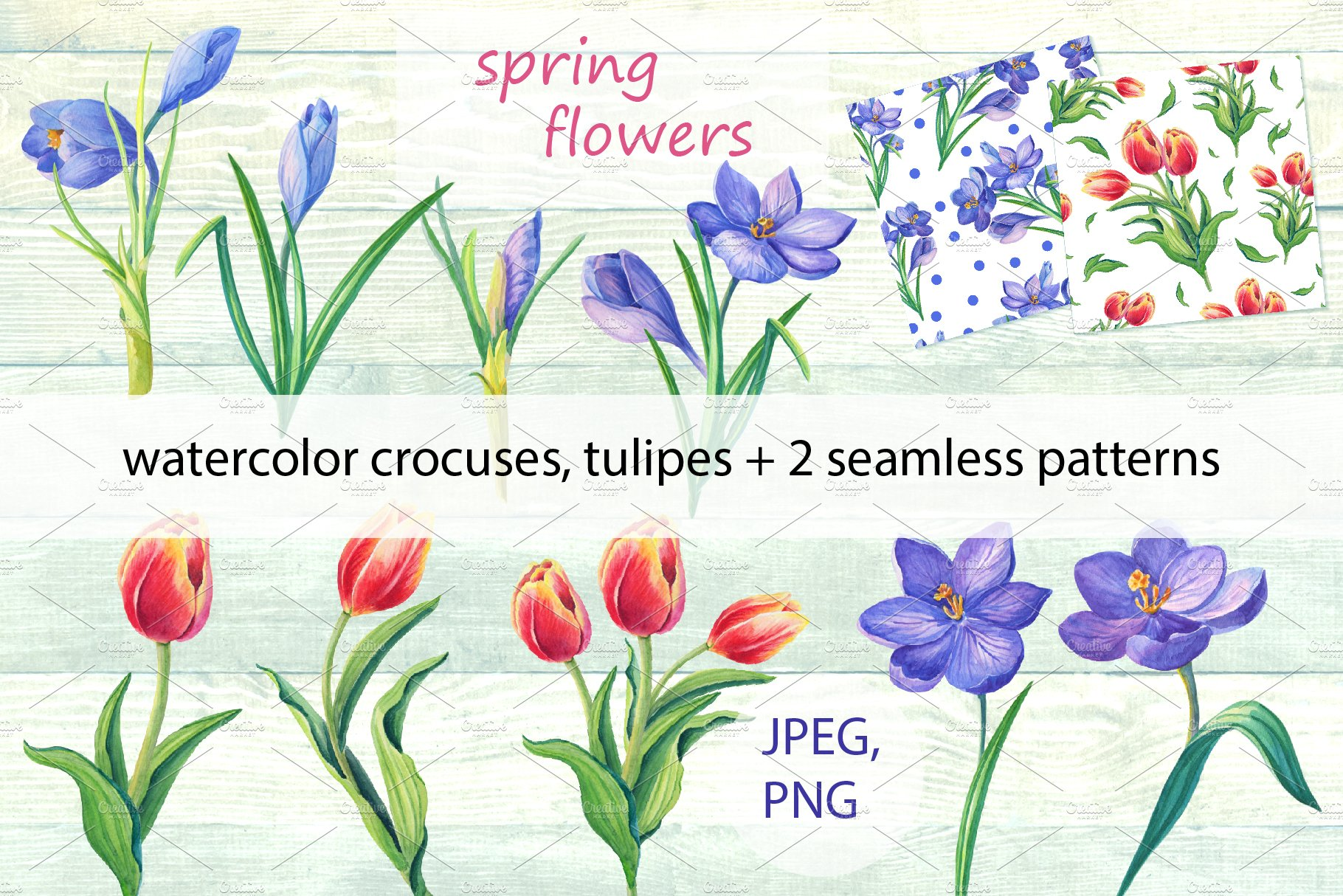 Spring Flowerswatercolor Illustrations Creative Market