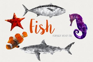 Fish - marine animals