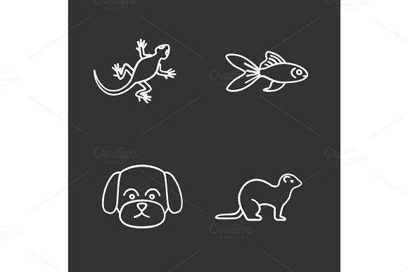Pets Chalk Icons Set