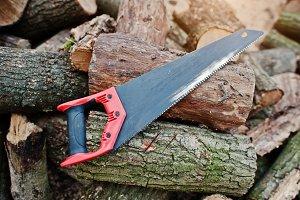 Saw in stump