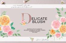 Delicate Blush - Spring Graphic set by Daria Cherniackova in Illustrations