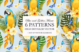 Blue-and-Golden Macaw Patterns
