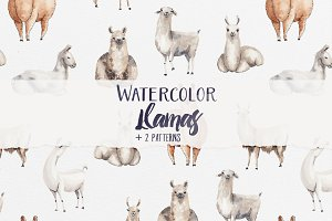 Watercolor Llamas + 2 Patterns
