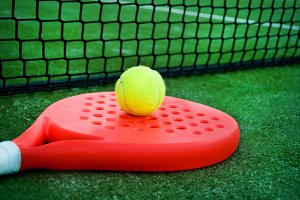 Paddle tennis racket, ball and net