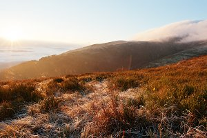 Golden autumn in mountains