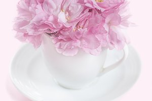 Coffee cup with pink almond flowers
