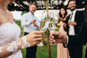 Newlyweds clinking glasses