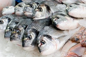 Fresh fish at fish shop, restaurant