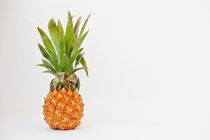 Exotic fruit baby pineapple