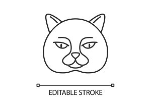 British shorthair cat linear icon