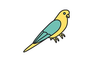 Budgerigar color icon