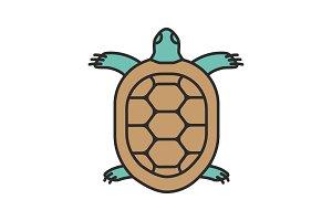 Tortoise color icon