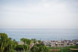 sea with tropical greenery