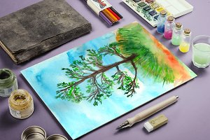 Pine tree, watercolor painting