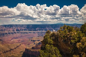Grand Canyon North Rim, Arizona, USA