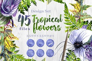 Tropical flowers PNG watercolor set