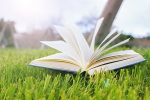 Open book on the green lawn