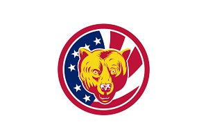 American Brown Bear USA Flag Icon
