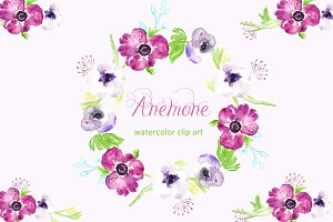 Anemone watercolor clip art