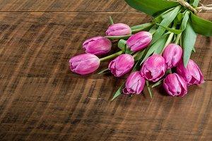 Bundle of tulip flowers tied