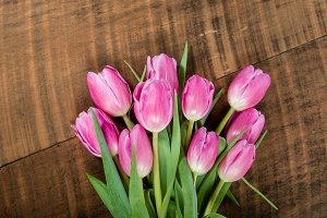 Bouquet of cut tulip flowers