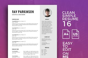 Resume Template 16
