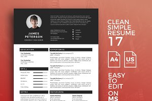 Resume Template 17