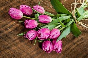 Bundle of tulip flowes tied