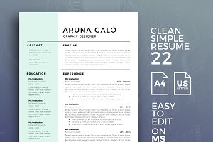Resume Template 22