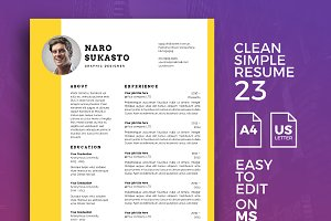 Resume Template 23